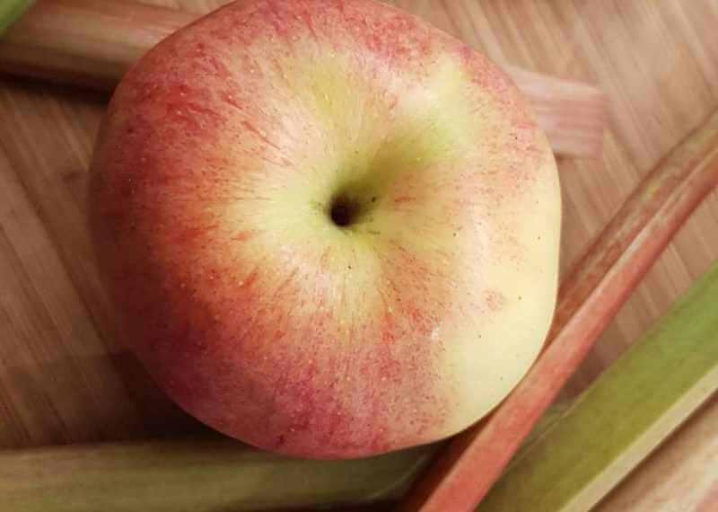 Vigeovit Blog Rhabarber Apfel